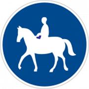 فقط عبور اسب سوار